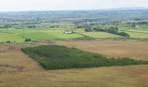 Demonstrating Best Practice in Raised Bog Restoration in Ireland