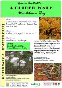 Guided walk Wooddown Bog Westmeath